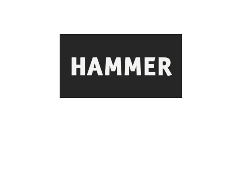 Hammer Kids